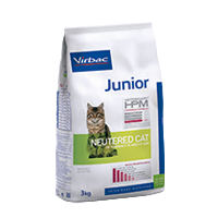 JUNIOR Cat - Neutered cat